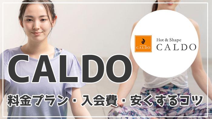 【カルド(CALDO)の料金を徹底解説】料金プラン・入会費・安くするコツを紹介