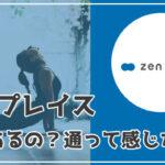 zen place(ゼンプレイス)って効果